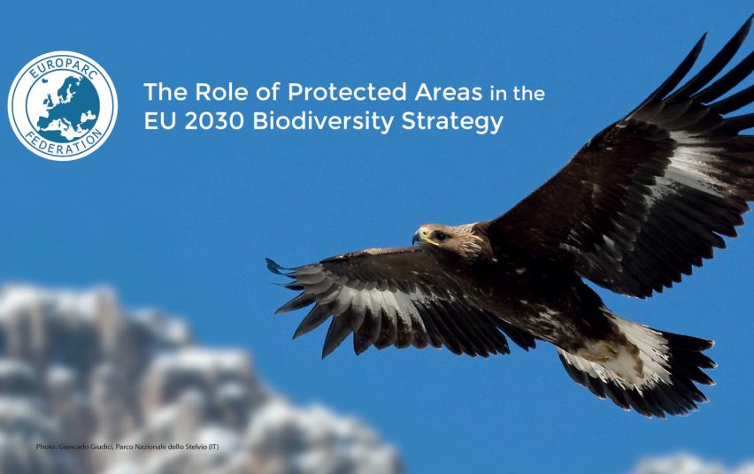 europos sąjungos biologinės įvairovės strategija iki 2021 m